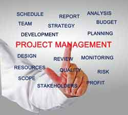 Project management activities: strategy, budget, team, stakeholders, risk