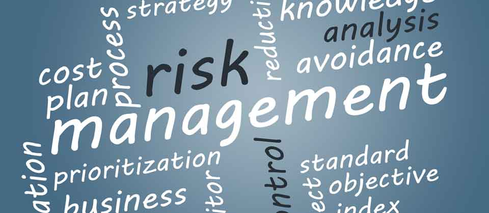 Risk management, analysis, prioritization, analysis, cost planning, strategy
